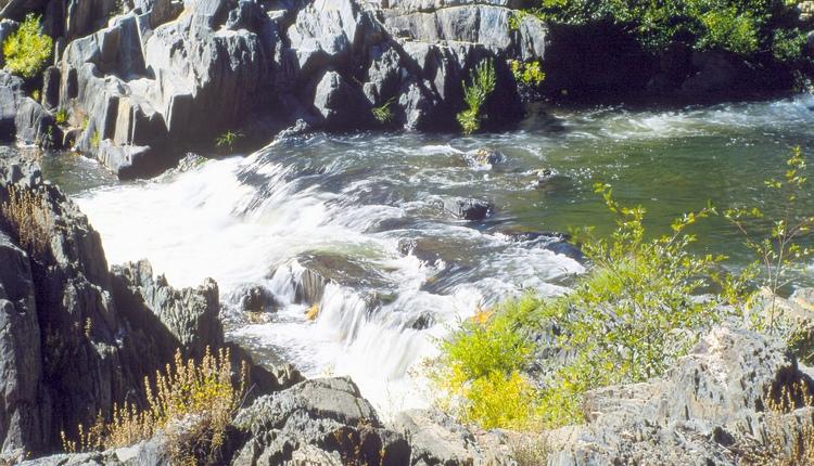 Gestione delle risorse idriche - sistemi ecologici