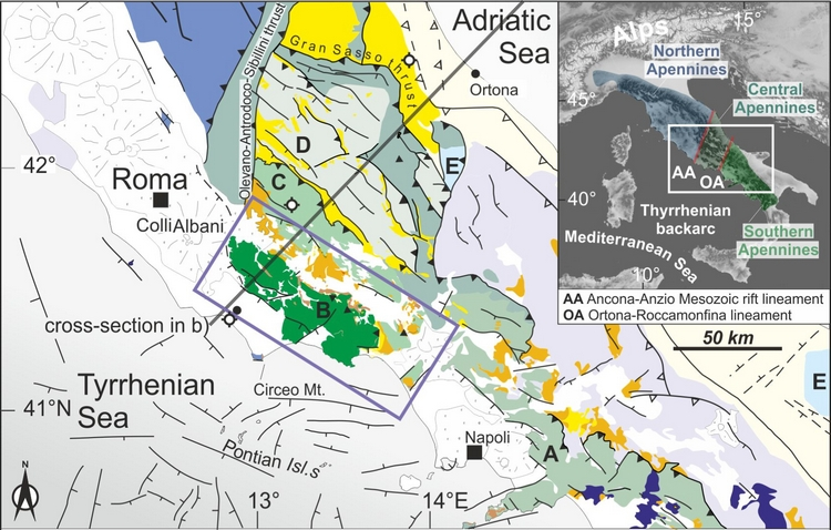 Constraining the Passive to Active Margin Tectonics of the Internal Central Apennines: Insights from Biostratigraphy, Structural, and Seismic Analysis.