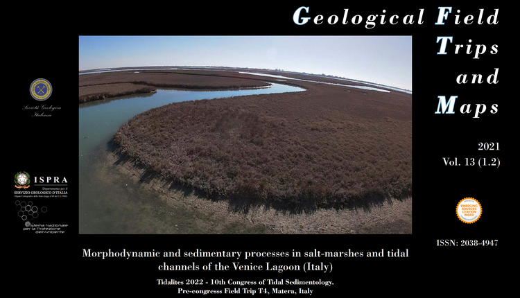 Open access | Morphodynamic and sedimentary processes in salt-marshes and tidal channels of the Venice Lagoon (Italy)
