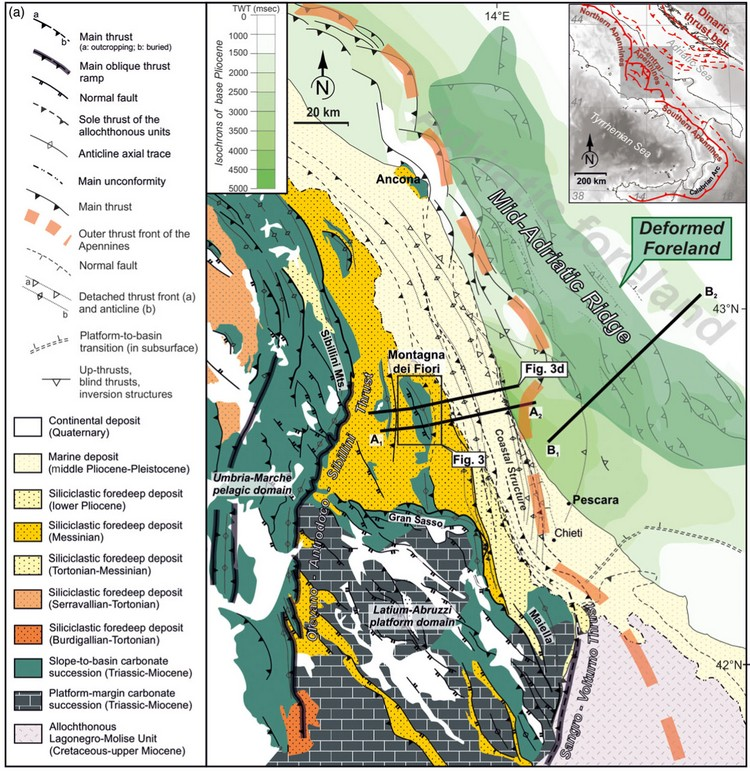 Open access | Dinaric up-thrusts in the Pliocene evolution of the Central Apennines thrust belt of Italy: the Montagna dei Fiori structure